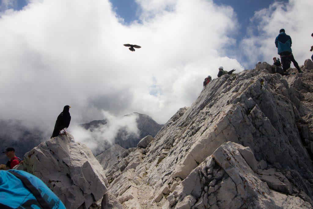 Alpspitze_170813 (7 von 25)