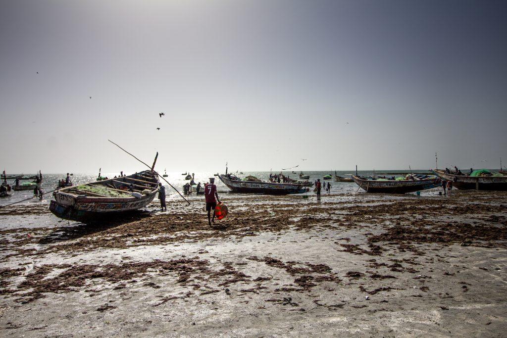 Gambia_2019 (18 von 89)-2